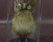 taxidermy of 2 head freak black duckling made by 2 ducklings mounted with case