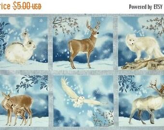 On Sale Winter White, Fabric Panel, Robert Kaufman Fabrics