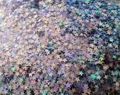sale Silver Holographic star glitter teeny tiny solvent resistant glitter mix