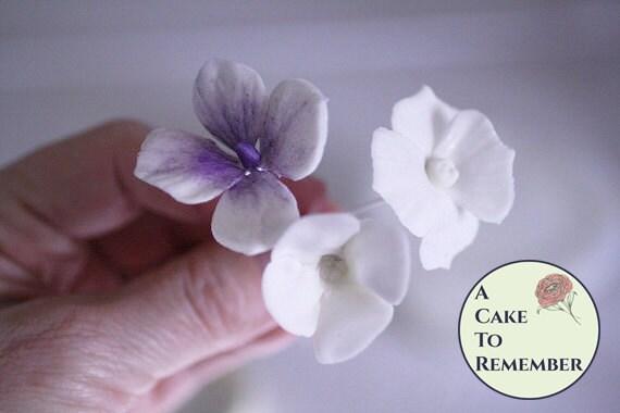 Gumpaste Hydrangeas Four Ways digital tutorial for cake decorating, gumpaste flower, hydrangea tutorial, cake tutorial PDF file for download