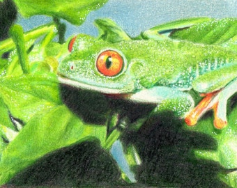 """Original ACEO - Tree Frog - 2.5"""" x 3.5"""" Unique Artwork - Free Shipping - Portion of Proceeds to Charity"""