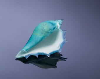 Art Glass Sculpture , Lampwork Glass Seashell , Hand Blown Glass , Small