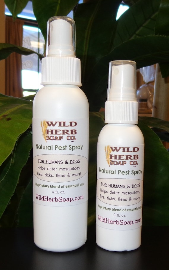 Items Similar To Natural Pest Amp Bug Repellent Spray Humans