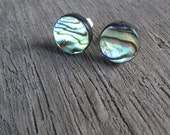 Abalone Stud Earrings Paua Shell post earrings silver 12 mm
