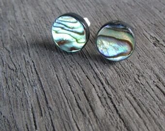 Abalone Stud Earrings stainless steel Paua Shell post earrings silver 12 mm