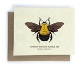 Bumble Bee Card - 100% of Profits to Save the Bees - Plantable Seed Paper