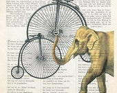 TECHNICIAN ELEPHANT bicycle art printposter illustrationdictionary art animals wall decor hobby giclee