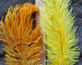Lot of Small Yellows Ostrich Plumes