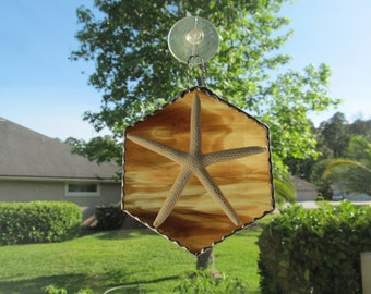 Stained Glass Brown-Amber-Ivory -  Authentic Starfish Sun catcher - Decorative Scallop Border Handcrafted Twisted Wire Hanger