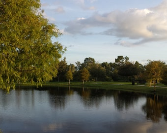 Reflection,Peaceful , park, water, trees, shade,image,Sunset, Photograph, Nature,Art, Wall art, Artwork, Lake
