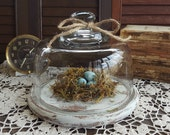 French Country Decor, Vintage Glass Cloche Display Dome with Wood Base, Distressed, Rustic Home Decor, Cottage Chic, Shabby Chic Decor