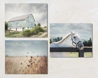Farm Photography Set of 3 Prints, Horse Wall Art Collection, Rustic Gallery Wall, Modern Farmhouse Decor, Three Photograph Set, Barn Photo