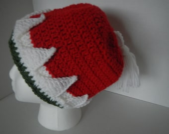 Santa Hat Hand Crocheted Red, White, and Green