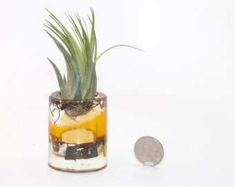 Steampunk . Watch Parts and Resin Air Plant Holder . Air Plant Continer . by Lori Davidson