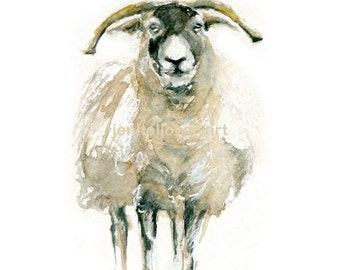 Watercolor Sheep, Sheep Print, Sheep Art, Farm Animal Art, Farm Animal Print