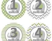 ON SALE Baby Monthly Milestone Growth Stickers Mossy Sage Green Grey Elephant Nursery Theme MS221 Baby Shower Gift Baby Photo Prop