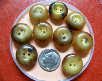 Set of 9 Antique Thick Polished Horn Buttons