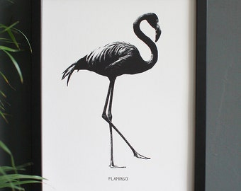 Encyclopedia Inspired Fine Art Print, Flamingo