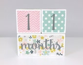 READY TO SHIP - Baby Month Age Blocks - Weeks Months Years Grade -Flowers Pink Mint Yellow Gray
