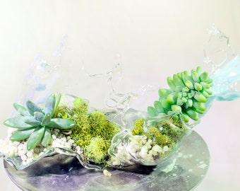 Succulent Terrarium Wave Inspired