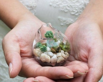 Succulent Terrarium Wedding Favors  15