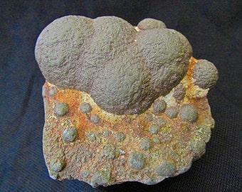 Mineral Specimen - Pyrite - Õismäe District, Tallinn, Harju Co., Estonia - NearEarthExploration