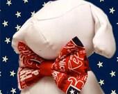 Republican Bow Tie