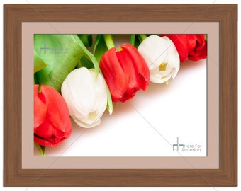 Red White Tulip Floral Flower Photographic Print - Various Sizes - Gift Idea