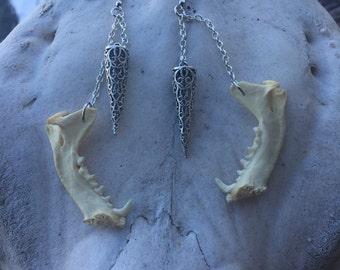 Skunk mandible earrings