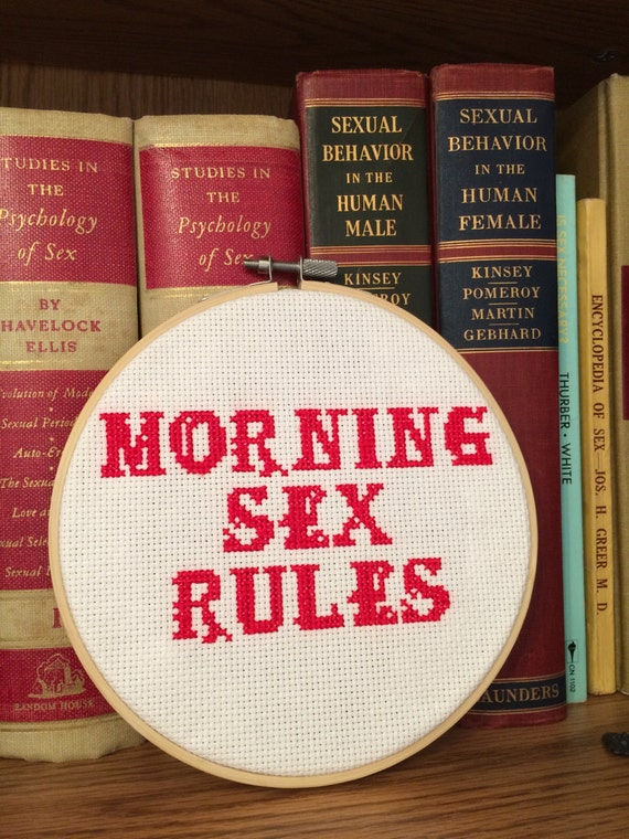 Framed Morning Sex Rules Cross Stitch Home Decor, Mature, Finished Piece