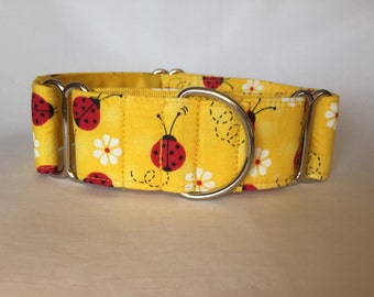 "1.5"" Yellow Lady Bug Martingale Collar"