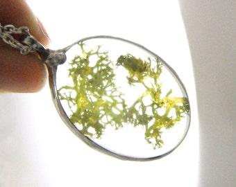 TeRRaRiuM Necklace: Moss Terrarium Pendant Pressed Moss Necklace Moss Pendant Trending Nature Jewelry Item Eco Friendly Boho Gypsy Jewelry