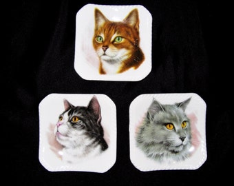 England Cats Royal Adderley Small Porcelain Dishes – Set of 3
