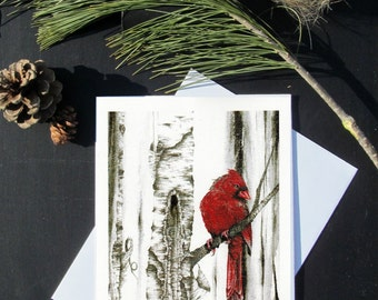 Karri Jamison 1 GREETING CARD, Title: Cardinal Male #3, on paper 5x7 inches