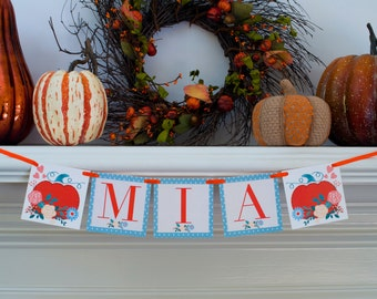 Little Pumpkin Banner, Fall Birthday Banner, Fall Customized Banner, Pumpkin Personalized Sign, P057