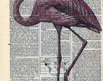 Vintage Illustration Printed on Antique Encyclopedia Page - Pink Dodo Bird