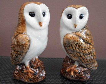 Barn Owl Salt and Pepper Shaker Barn Owl Salt and Pepper Hand Painted Stunning Supplied Gift Boxed