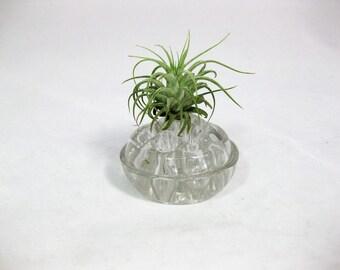 Glass Flower Frog, Vintage Glass Flower Frog, Floral Arranging