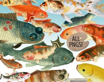 Clipart - Koi Fish Digital Images - Goldfish & Koi Clip Art - Digital Scrapbooking Koi Digital Images - Instant Download - Fish Clipart