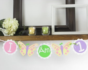 Butterfly Age Banner- Butterfly Party - Butterfly Banner - Butterfly Decor