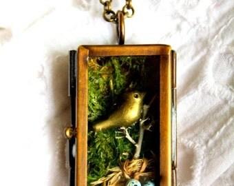 Enjoy 50% OFF Now Robin's nest pendant - Collier nid de merle