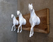 EQUINE COLLECTION three Arabian horse heads clothing / bridle rack in white