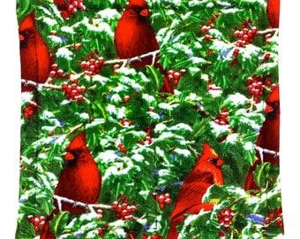 Cardinal Season - Pot Holders (Set of 2)