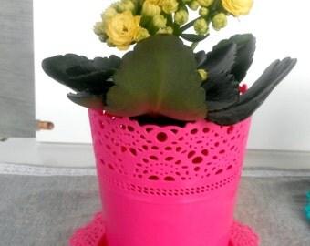 Pot, plastic pot, flower pot, flower plastic pot,pink pot, fuksia pot , flower in pot,garden pot,garden decoration,