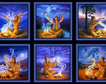 Native Visions panel.