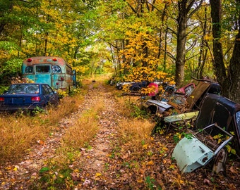 Car parts and vehicles in a junkyard. | Photo Print, Stretched Canvas, or Metal Print.
