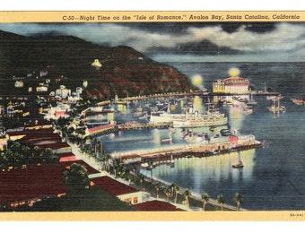Santa Catalina California Vintage Postcard (unused)