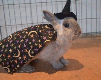 Witch costume for small animal, Halloween pet costume, pet rabbit costume, wizard costume, sorcerer costume, pet costume, guinea pig costume