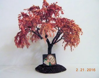 Weeping Spring Tree 6 inches high