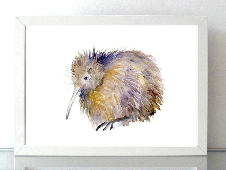 Kiwi Bird Art New Zealand Art Kiwi painting watercolor